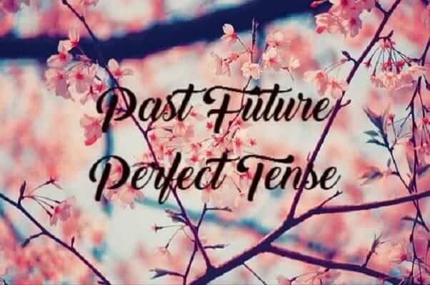Past Future Perfect