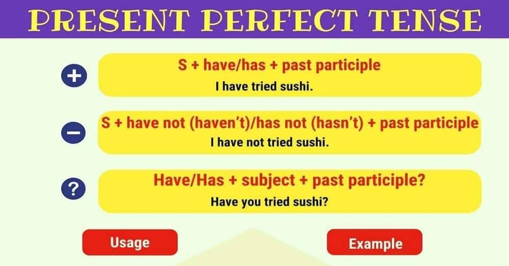 Present Perfect Tenses, Pengertian, Jenis-Jenis dan Contohnya