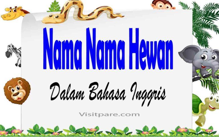 Nama Nama Hewan dalam Bahasa Inggris Beserta