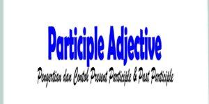 Participle Adjective: Pengertian dan Contoh Present Participle & Past Participle